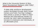 what is the university system of ohio talent development network uso tdn