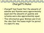 chargaff s rules