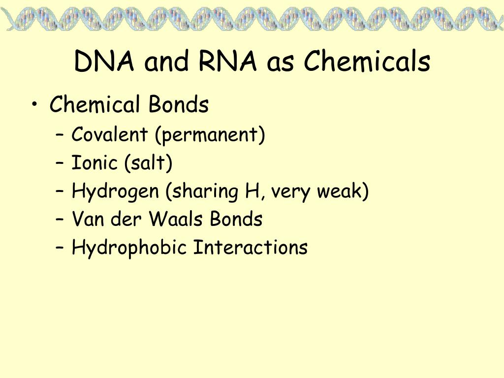 DNA and RNA as Chemicals
