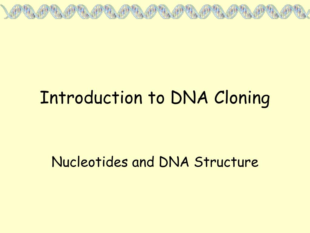 introduction to dna cloning l.