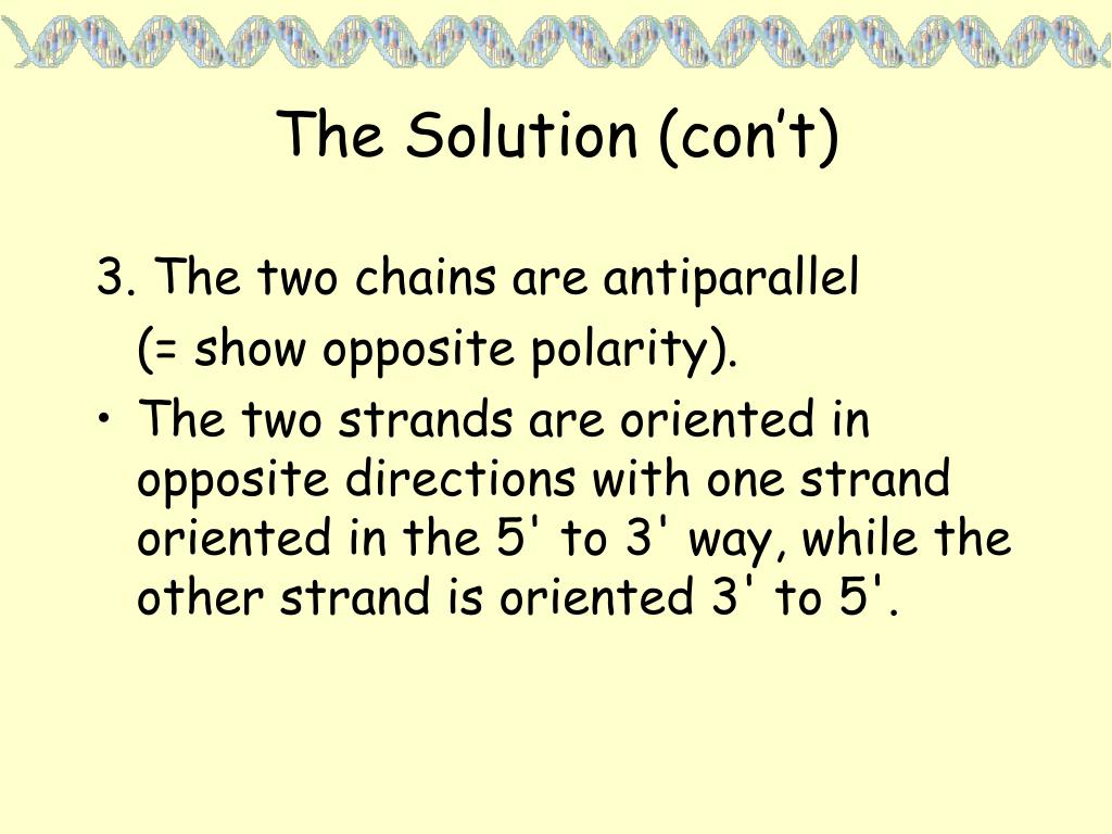 The Solution (con't)