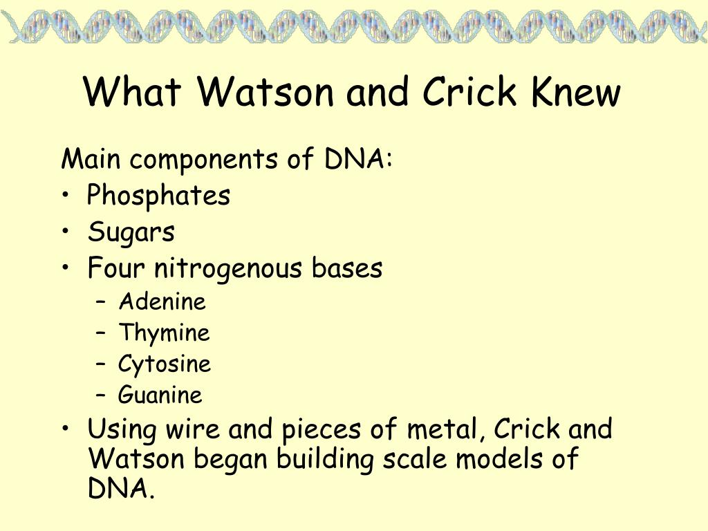 What Watson and Crick Knew