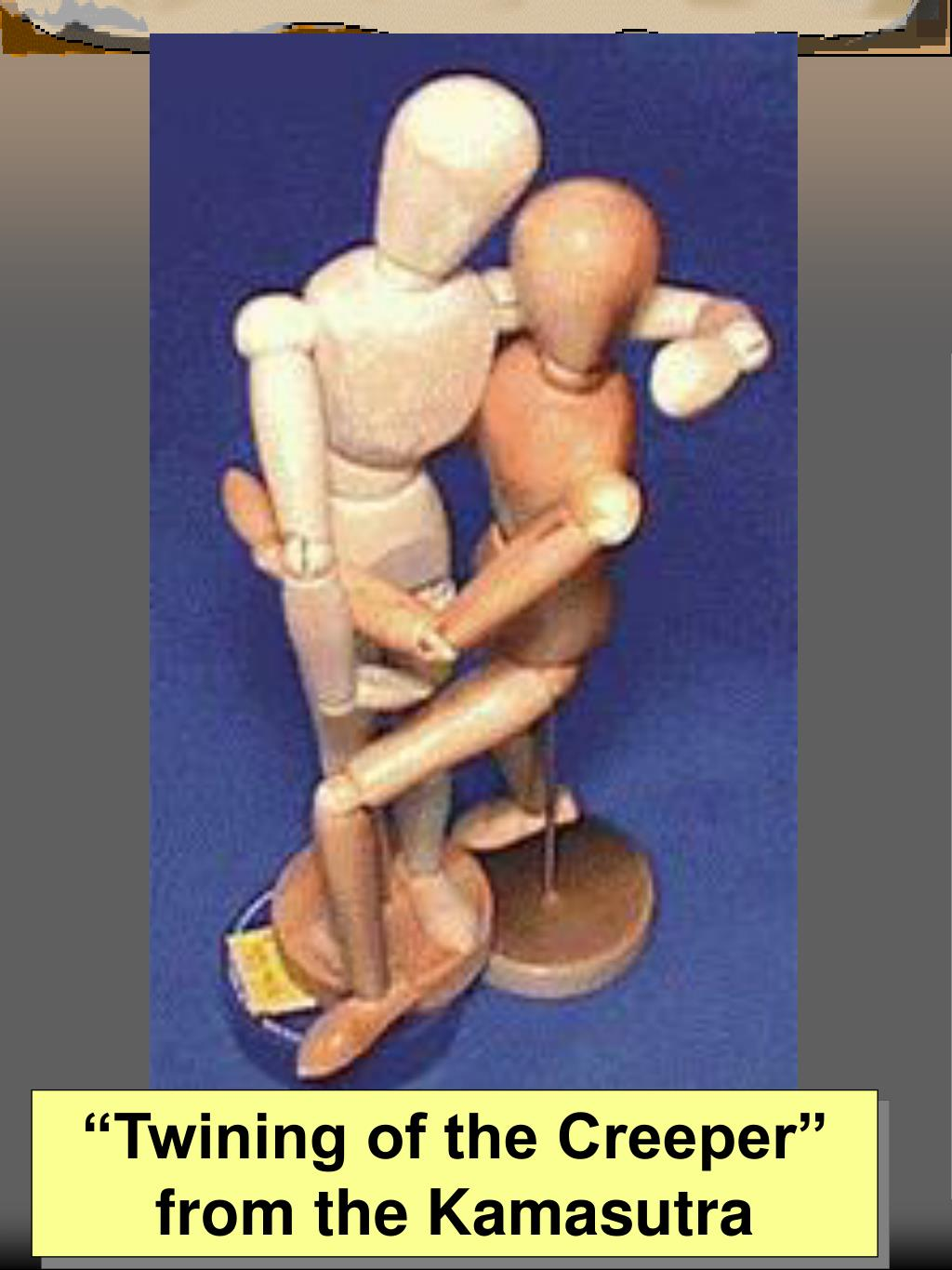 """""""Twining of the Creeper"""" from the Kamasutra"""