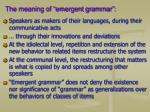 the meaning of emergent grammar