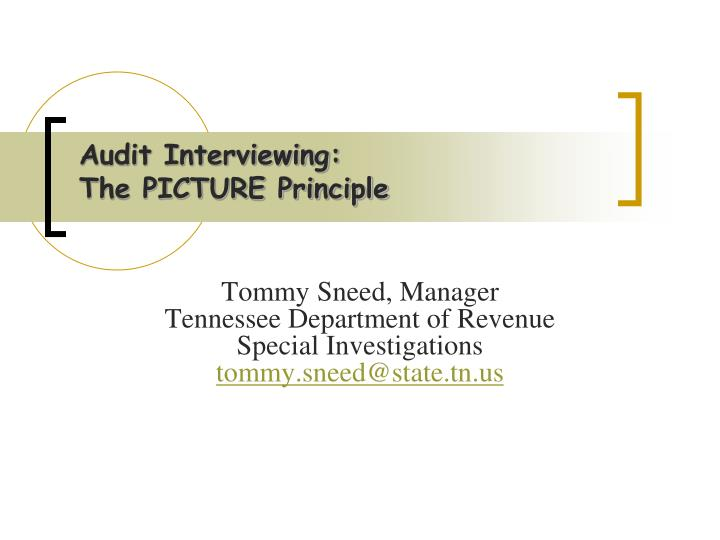 audit interviewing the picture principle n.