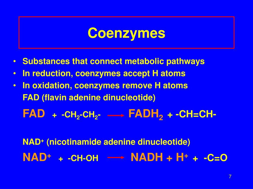 Coenzymes