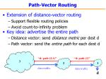 path vector routing