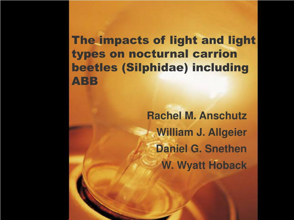 the impacts of light and light types on nocturnal carrion beetles silphidae including abb