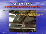 steam link steam system efficiency specialist14