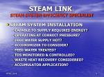steam link steam system efficiency specialist9