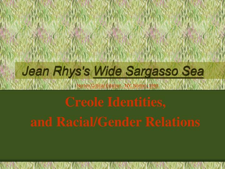 the relationship between rochester and antoinette in wide sargasso sea by jean rhys