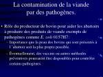 la contamination de la viande par des pathog nes76