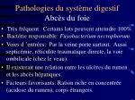 pathologies du syst me digestif abc s du foie