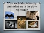 what could the following birds that are in the play represent