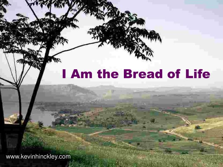 i am the bread of life n.