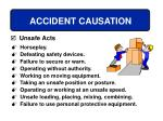 accident causation32