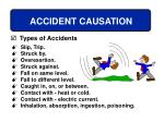 accident causation36