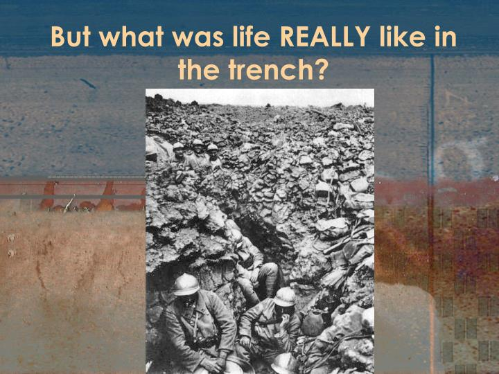 But what was life REALLY like in the trench?