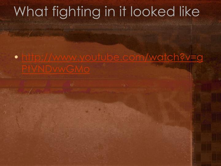 What fighting in it looked like