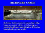 restrainer cables