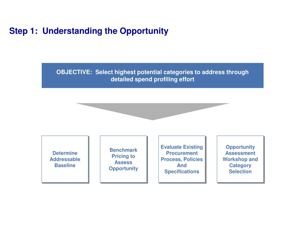 Step 1:  Understanding the Opportunity