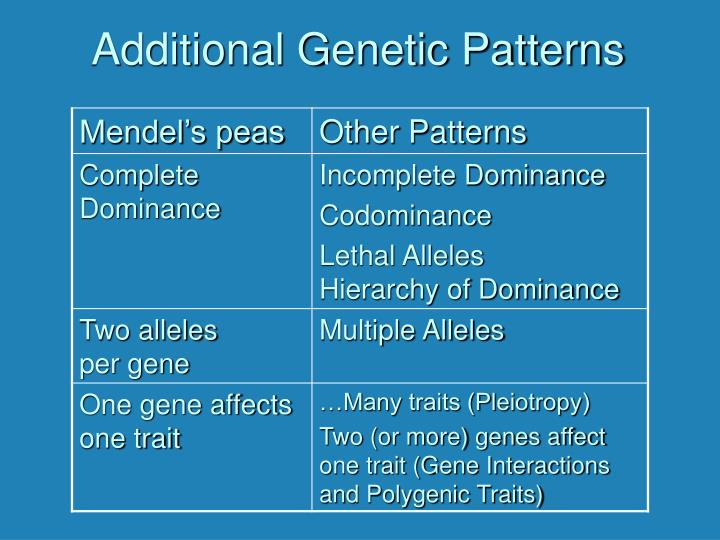 additional genetic patterns n.