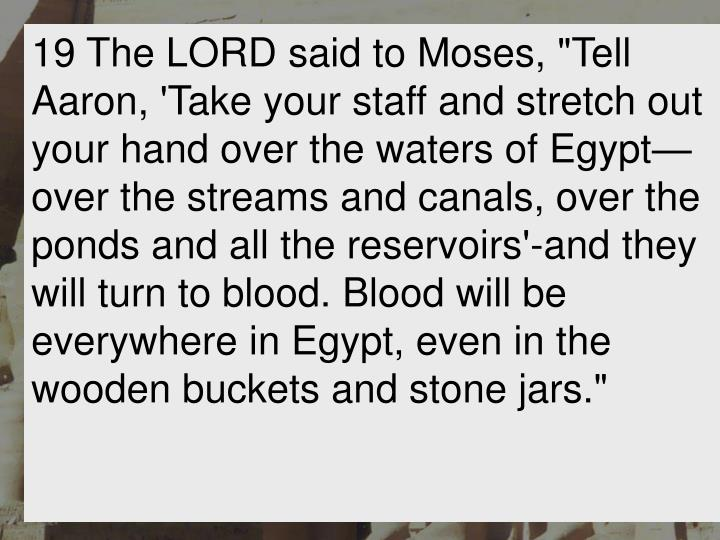 """19 The LORD said to Moses, """"Tell Aaron, 'Take your staff and stretch out your hand over the waters of Egypt—over the streams and canals, over the ponds and all the reservoirs'-and they will turn to blood. Blood will be everywhere in Egypt, even in the wooden buckets and stone jars."""""""
