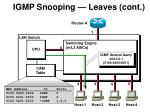 igmp snooping leaves cont