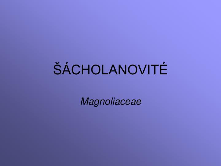 cholanovit n.