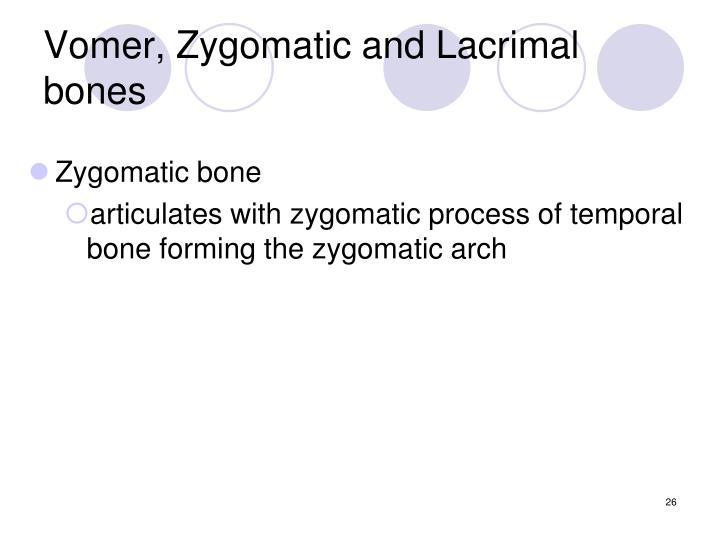 Vomer, Zygomatic and Lacrimal bones