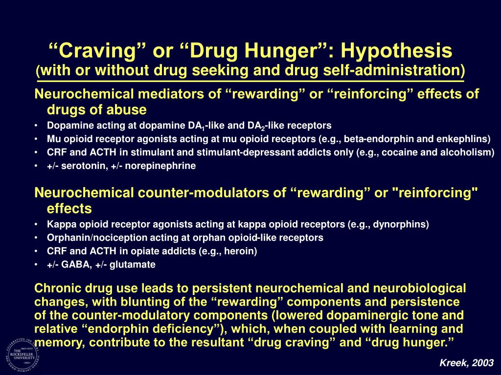"""Craving"" or ""Drug Hunger"": Hypothesis"