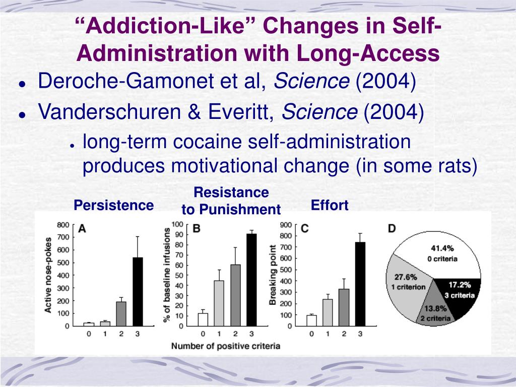 """Addiction-Like"" Changes in Self-Administration with Long-Access"