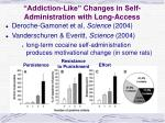 addiction like changes in self administration with long access