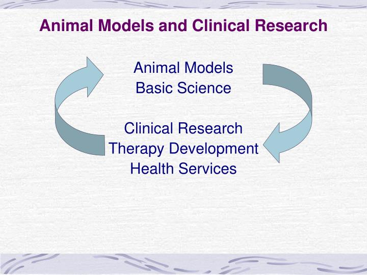 Animal models and clinical research