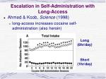 escalation in self administration with long access