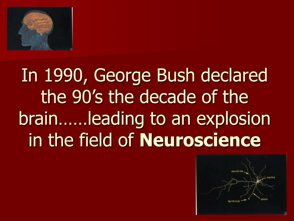 In 1990, George Bush declared the 90's the decade of the brain……leading to an explosion in the field of