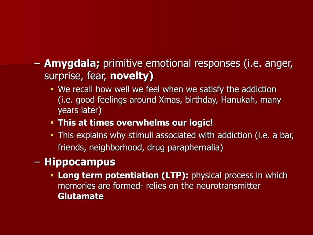 Amygdala;