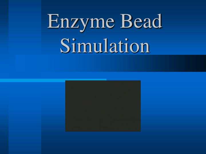 Enzyme bead simulation