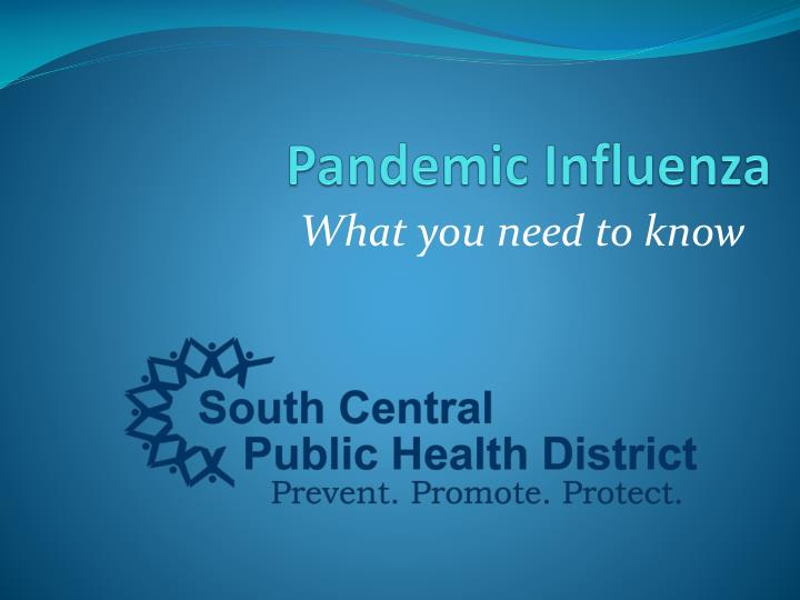 ethical issues in influenza pandemics essay Academiaedu is a platform for academics to share research papers confronting an influenza pandemic: ethical ethical issues prior to setting pandemic.
