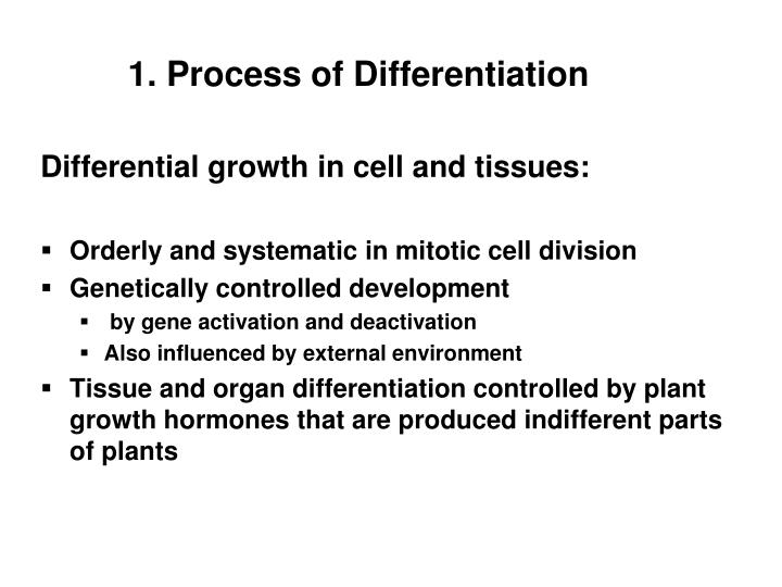 1 process of differentiation