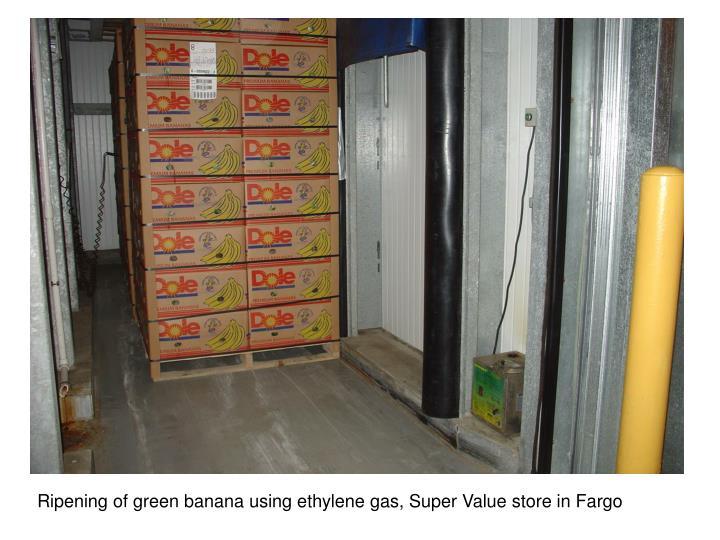 Ripening of green banana using ethylene gas, Super Value store in Fargo