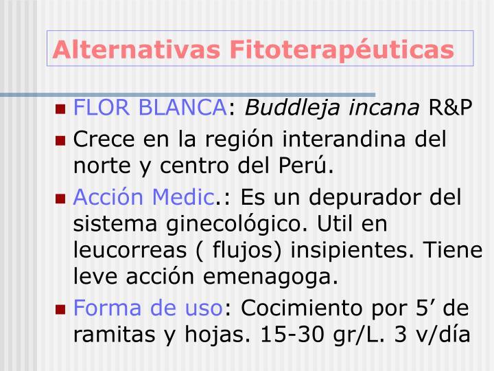 Alternativas Fitoterapéuticas