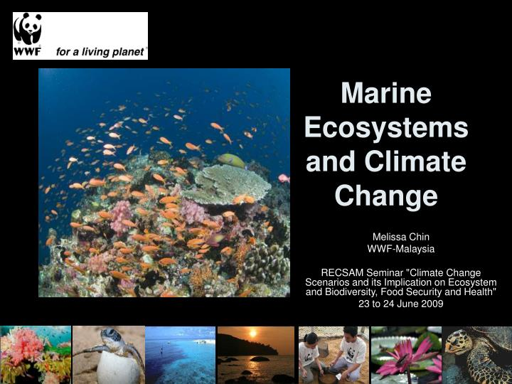 marine ecosystems and climate change n.