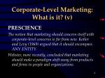 corporate level marketing what is it v