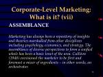 corporate level marketing what is it vii