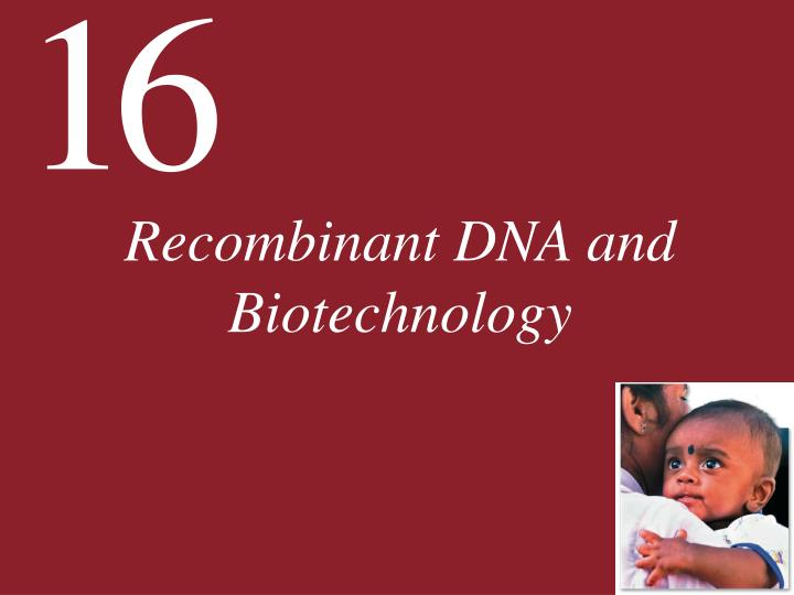 recombinant dna and biotechnology n.