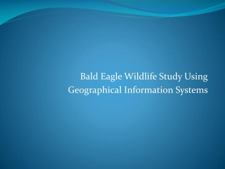 bald eagle wildlife study using geographical information systems n.