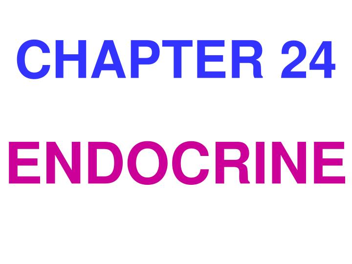 chapter 24 n.