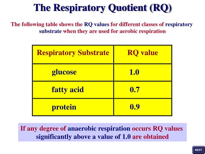 respiratory quotient Respiratory quotient during exercise b tssekutz, jr, and k rodahl.