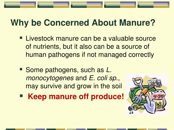 Why be concerned about manure